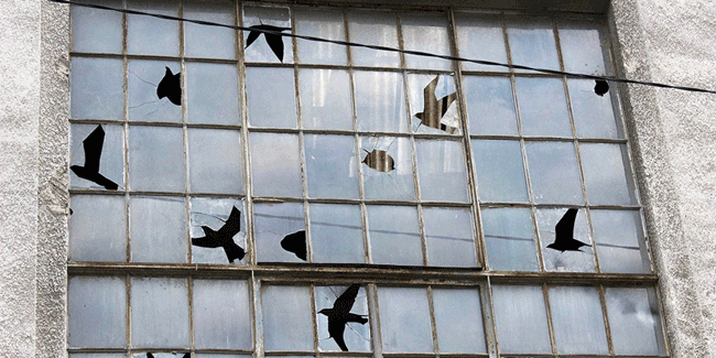 Pejac Birds Negative Space Art